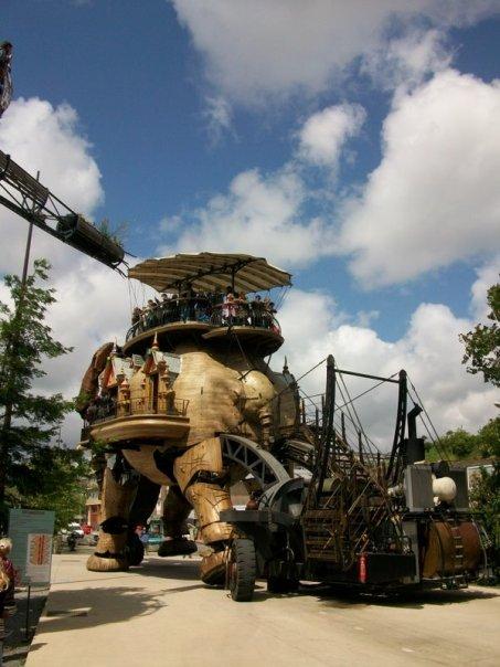 a dos d'éléphant...de bois
