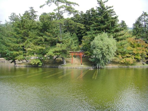 petit torii sur petite ile