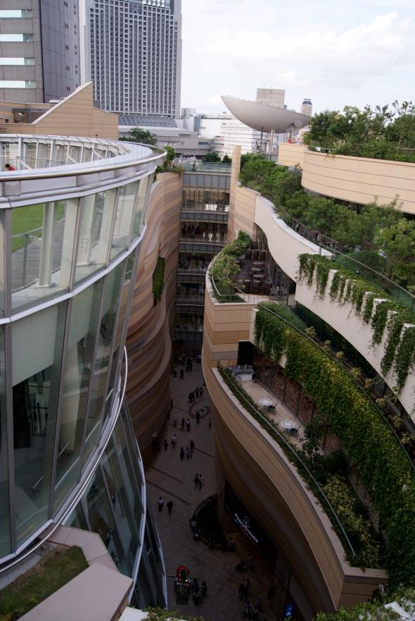 terrasses vertes