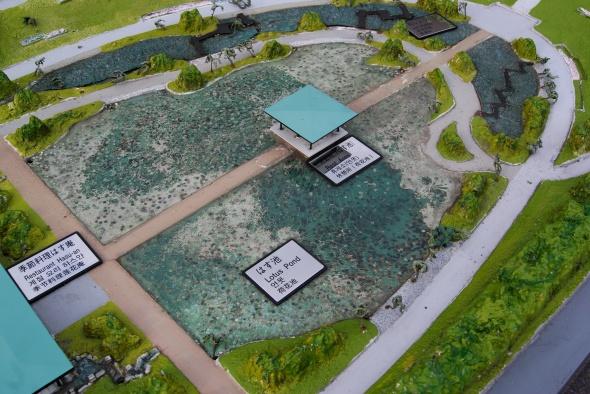 maquette étang lotus