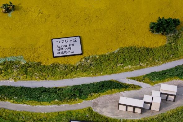 maquette colline aux azalées